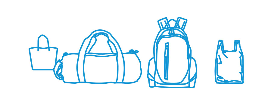 Багаж и ручная клад авиакомпании Победа