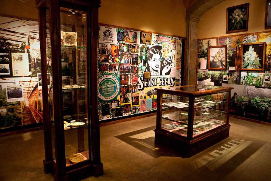 Музей конопли в Барселоне