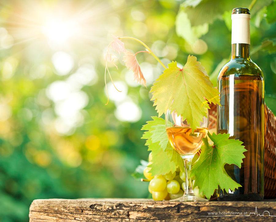 Экскурсия на виноградники Вены