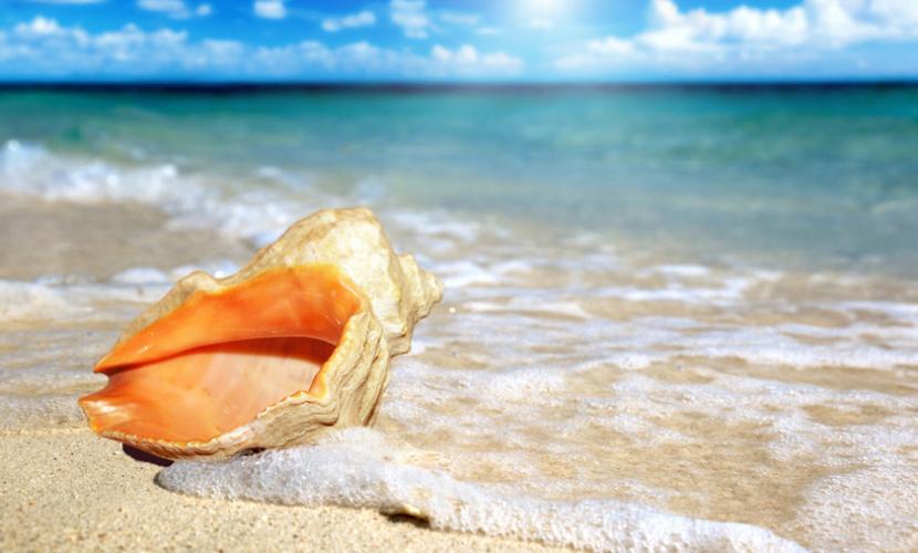 Пляжи Анапы