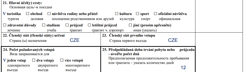 образец заполнения зеленой анкеты чехия