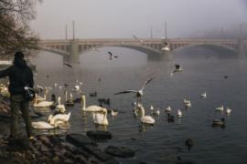 Манесов Мост в Праге