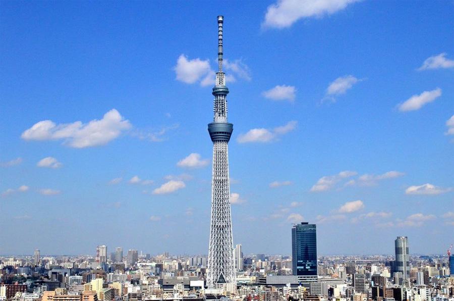 Скайтри в Токио